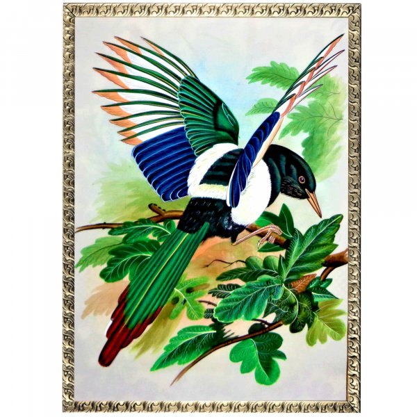 Magpie Bird Painting
