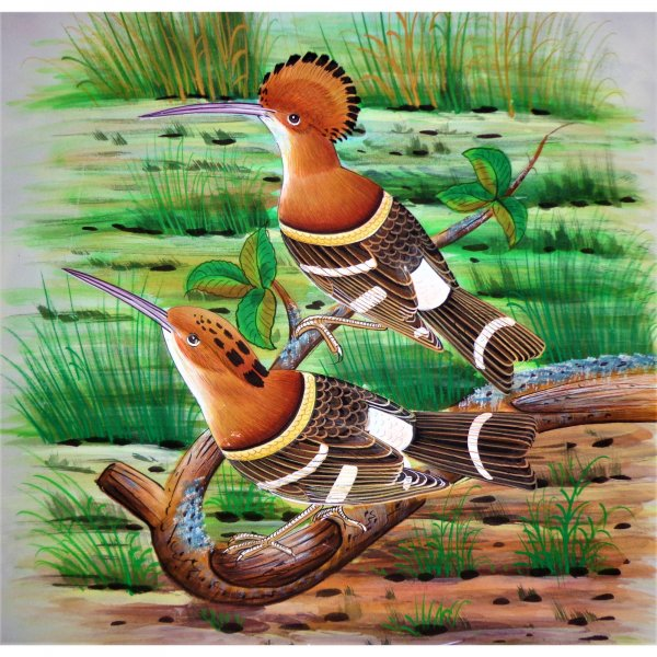 Hoopoe Bird Painting