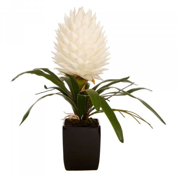 Faux White Tropical Plant - BBFPP18